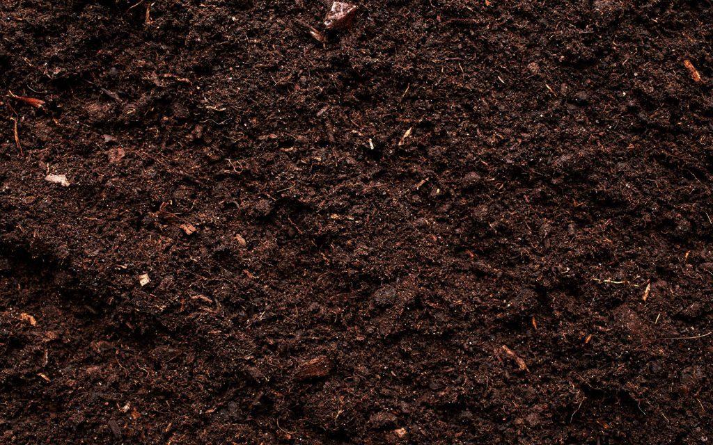 Compost Belfast