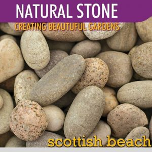 Stone Scottish Beach Pebble