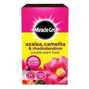 500g Miracle-Gro Ericaceous Soluble Plant Food
