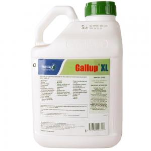 5L Gallup XL